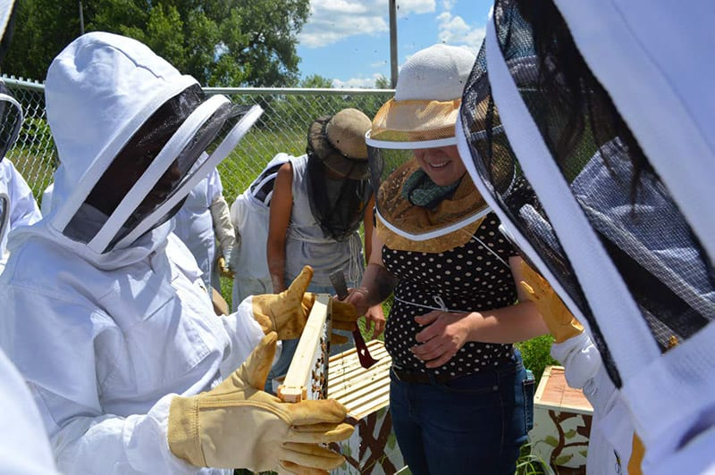 St. Paul Apiary Project